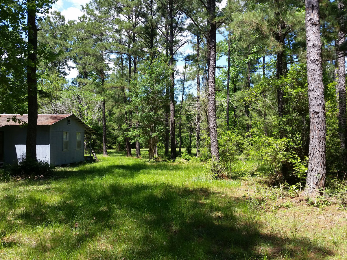 Hunting Property East Texas