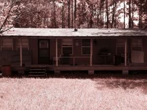 hunting cabin 3 sepia