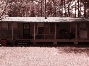 hunting cabin 3 sepia