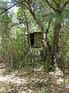 hunting-cabin-land-blind